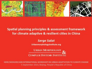 Spatial planning principles for urban resilience